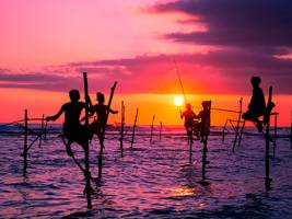 Groepsreis Sri Lanka: Cultuur & Strand; Schatten van Ceylon