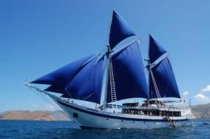Cruise Ombak Putih of Katharina: 8 dagen varanen, walvishaaien &