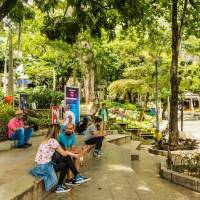 The Ultimate Must-See Medellín   City Unscripted