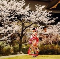 Groepsrondreis Japan Hoogtepunten