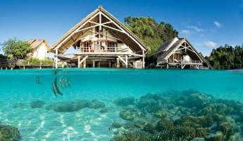Bouwsteen 8 dagen duiken Misool Eco resort - Raja Ampat