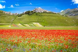Abruzzen & Puglia