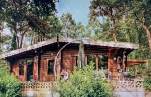 Natuurhuisje in Bergentheim