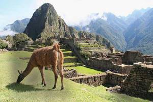 Individuele rondreis Peru