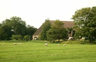 Naturhäuschen in Boer
