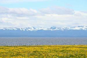 Individuele rondreis Argentinië en Chili